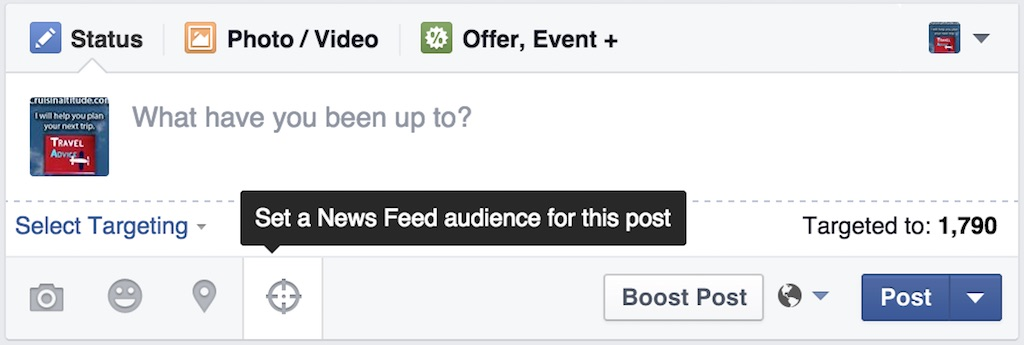 Facebook Select Targeting option