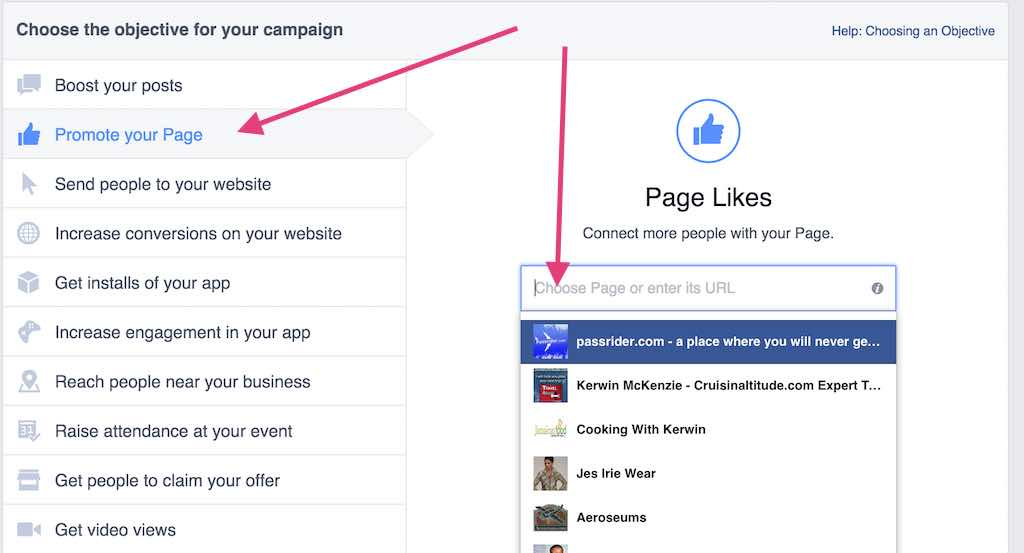 Facebook Ads Promote Your Page Option